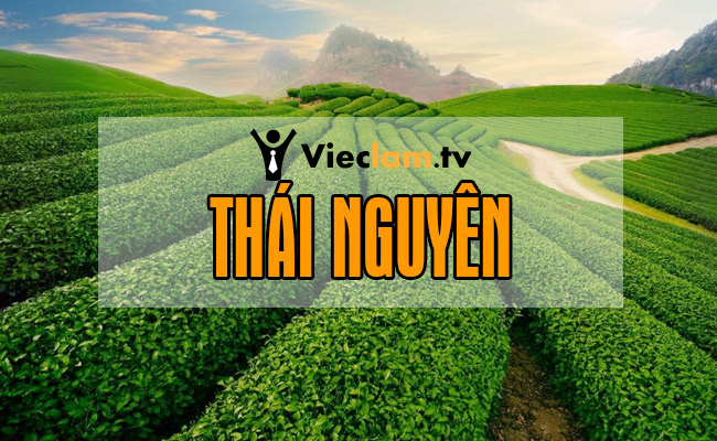 Tuyển dụng việc làm tại Thái Nguyên